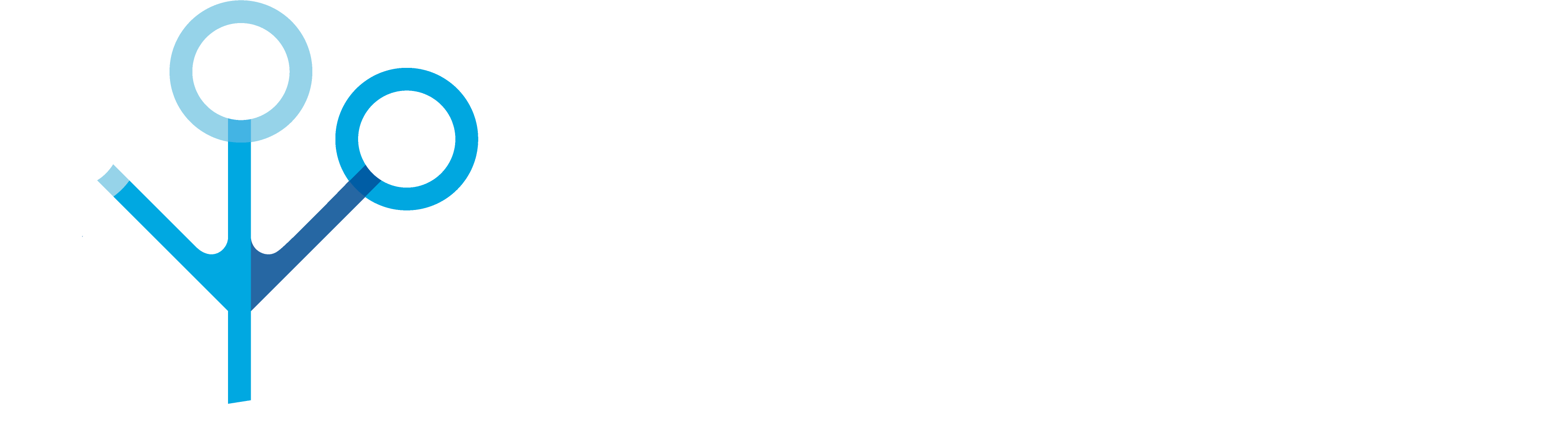 Swallowing Innovations Lab